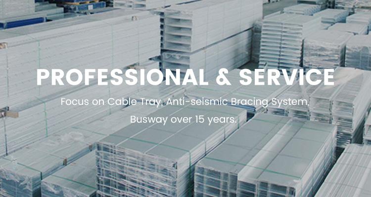 professional & service